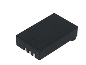 FUJIFILM FinePix S100FS battery